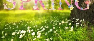 spring-1280x770